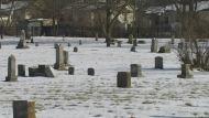 Eight Acres of History: Lexington