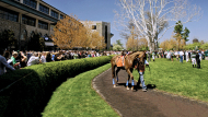 75 Years of Keeneland: A Look Back