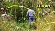 Sugar Cane, Sorghum, and Stir-Offs